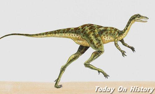 世界上最重的恐龙是极龙 重达100吨的极龙
