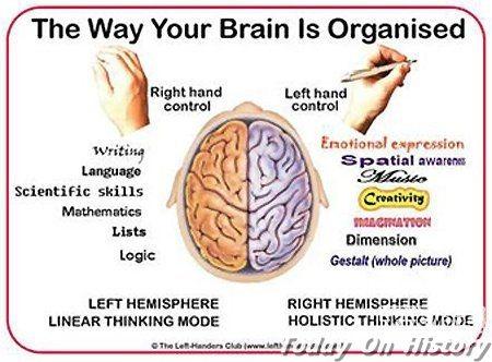 关于大脑的16个怪异事实 你知道几个?