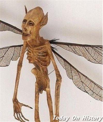 长着翅膀的人真的存在? 中国也曾有过目击报告?